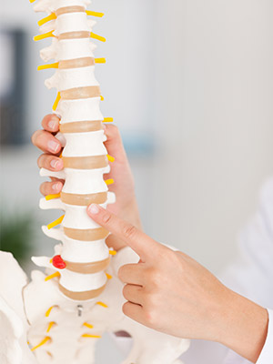 Physiotherapie Wirbelsäule